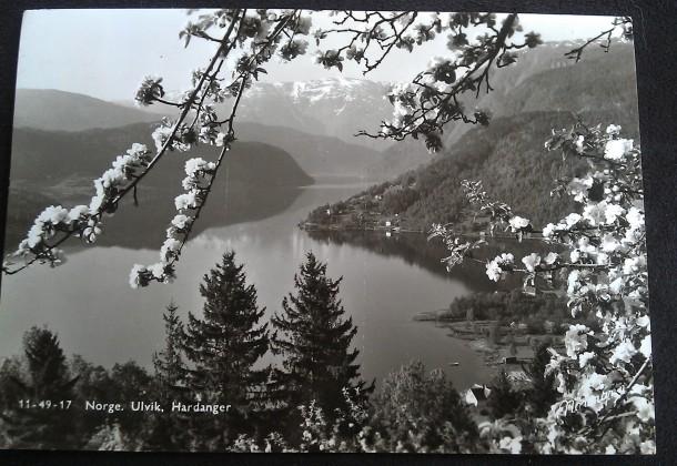 Postcard Ulvik 1958